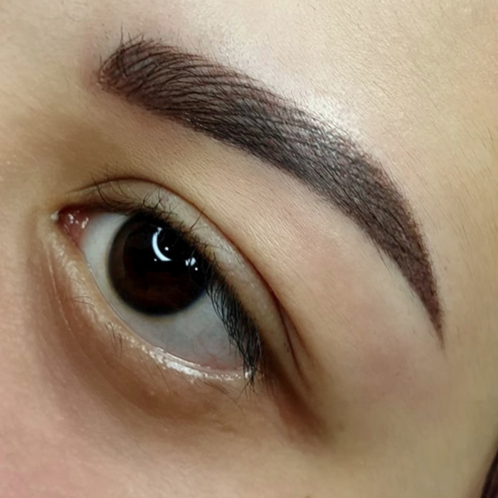 Close-up of eyebrows with permanent make-up (PMU) by amiea International Master Trainer Suzé Steyl, result of an eyebrow treatment with PMU
